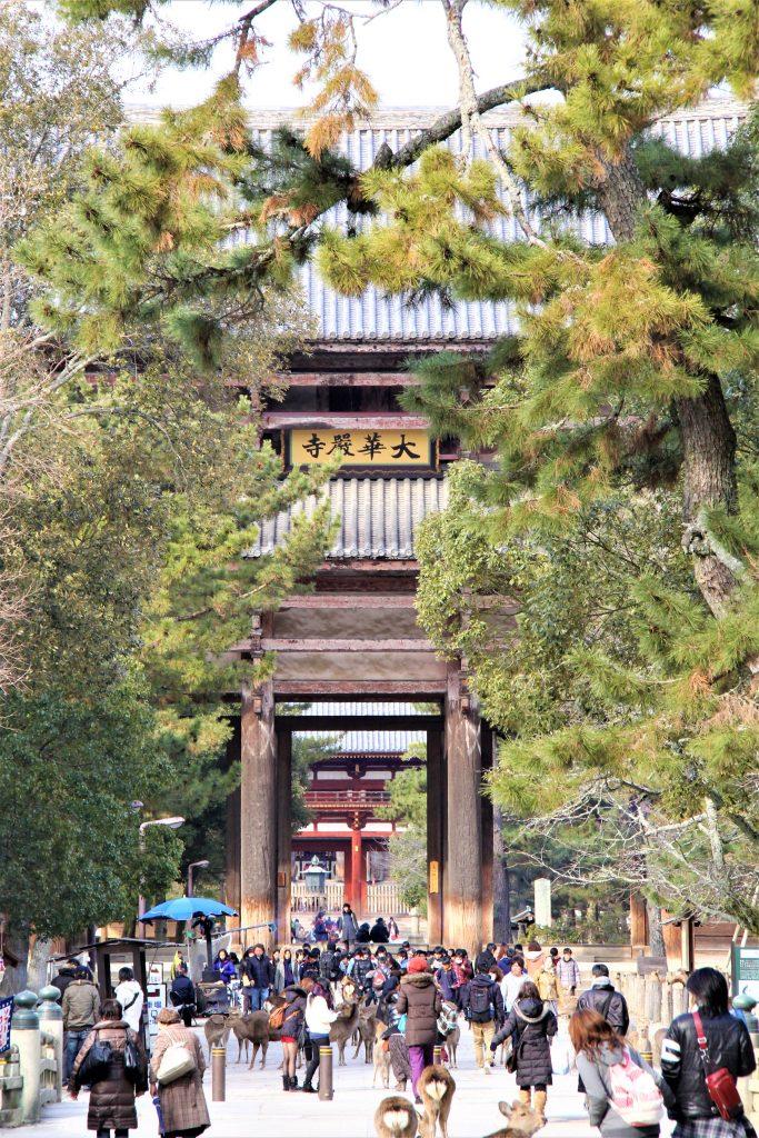 奈良 大仏 東大寺 大仏殿 再発見 大人 楽しむ 奈良 観光 旅行 モデル コース ファミリー カップル 一人旅 奈良県 奈良市 初心者