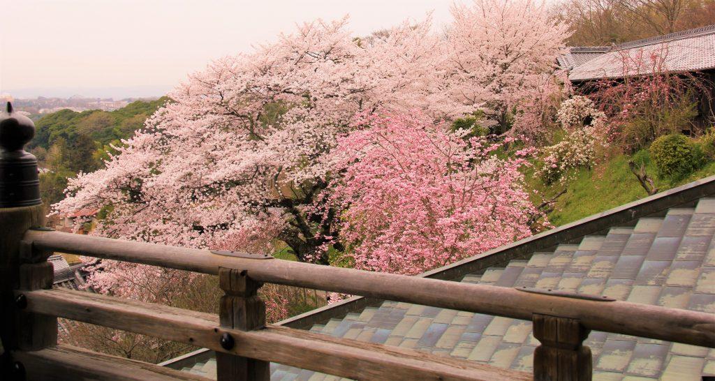 大阪「サムハラ神社」