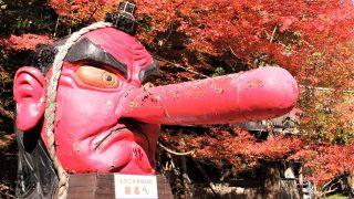 京都最強パワースポットを山越え!鞍馬~貴船ハイキングは初心者もおすすめ