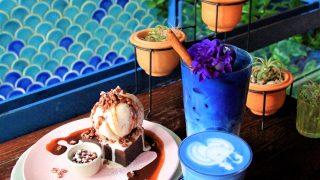 乃木坂46も来た!タイのインスタ映えカフェ「ブルーホエール・マハラート」