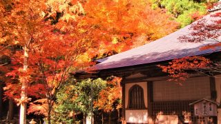 女ひとり、京都旅行!三千院、高山寺、大覚寺&おすすめ観光スポット